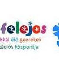 Fogyatékkal Élő Gyerekek Rehabilitációs Központja