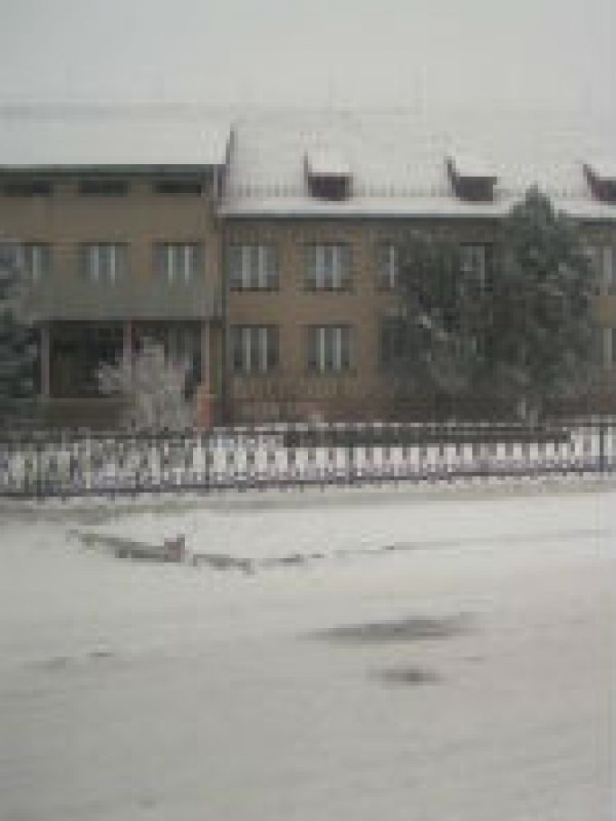 Borzsovai Általános Iskola