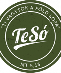 TeSó blog